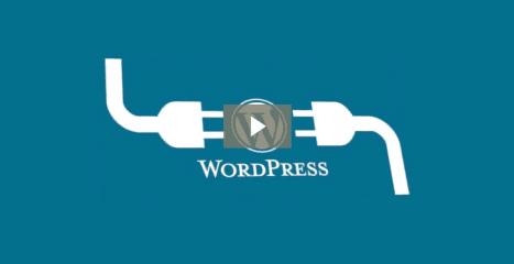 Our Top Three WordPress Plugins