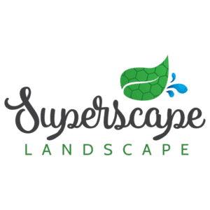 Superscape Landscape