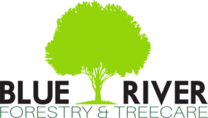 Blue River Foresty & Tree Care