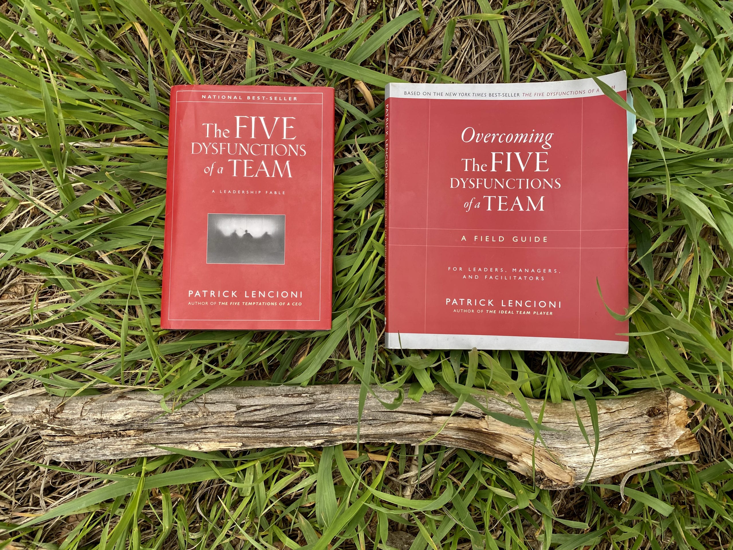 Five Dysfunctions of a Team - Book Photo on Grass