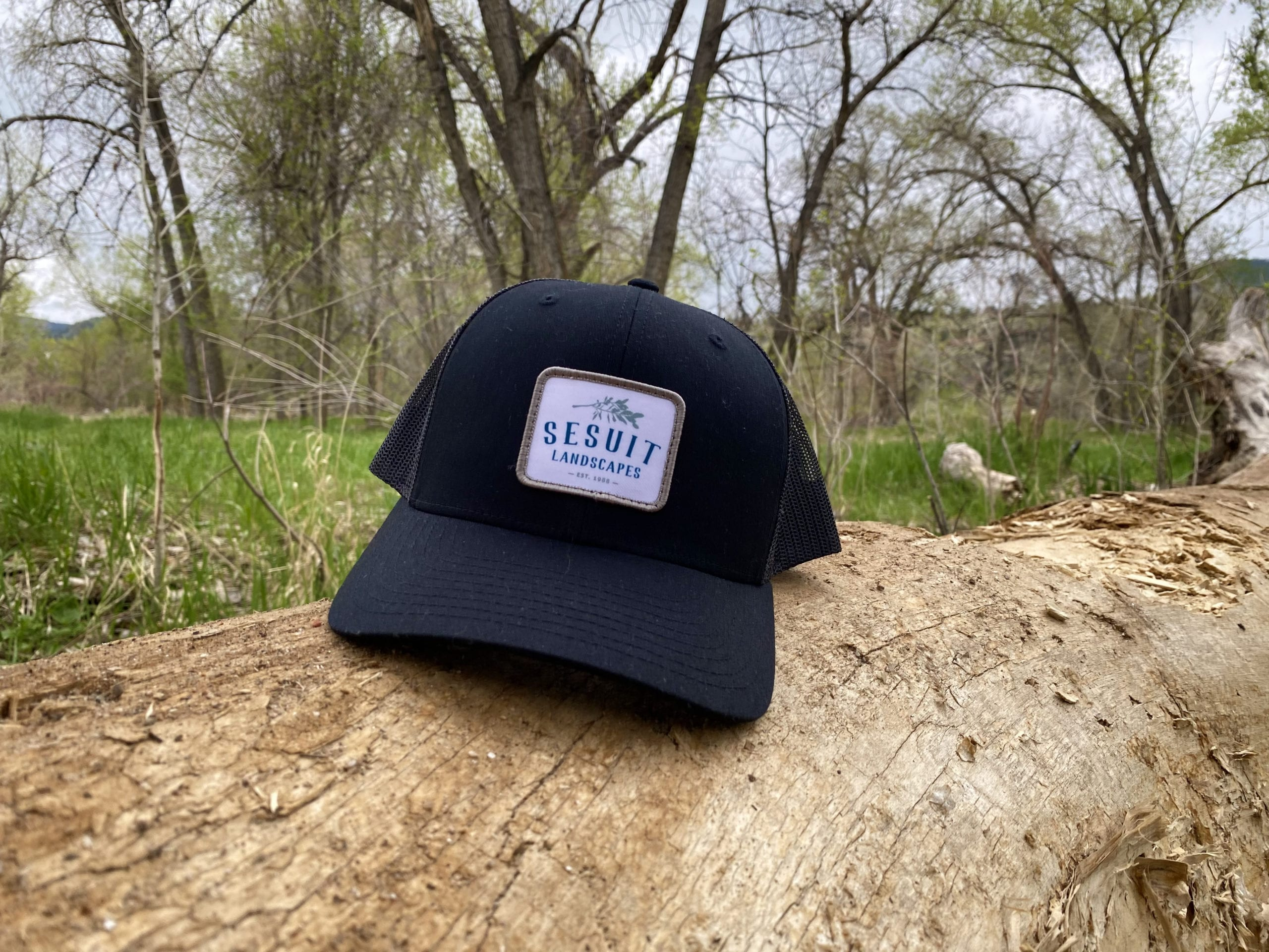 Photo of Sesuit Hat on Log