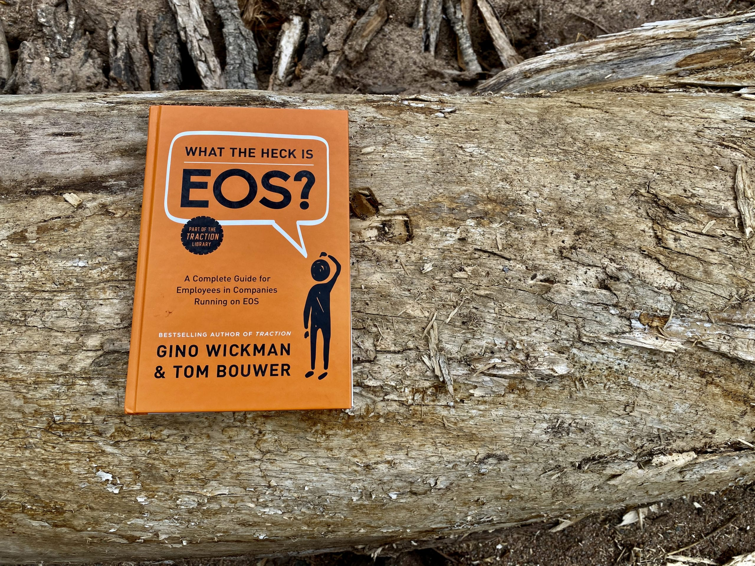 What The Heck Is EOS - Book Photo on Log